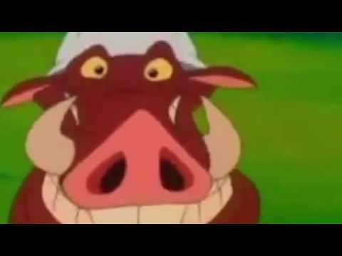Timon And Pumbaa Episode 27